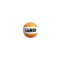 TANDI - Online Safety Induction Training Platform