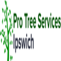 Pro Tree Services Ipswich